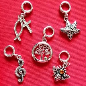 Set of 5 Clip On Charms $125